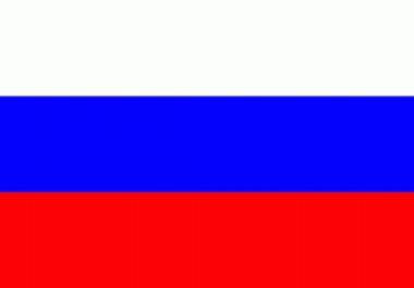 Ma pakun kvaliteetset tõlketeenust suunal vene-eesti