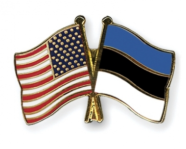 Ma tõlgin inglise keelest eesti keelde.