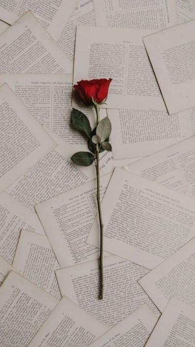 Ma Loen teie eest raamatuid ning teen selle põhjal esse või vastan küsimustele