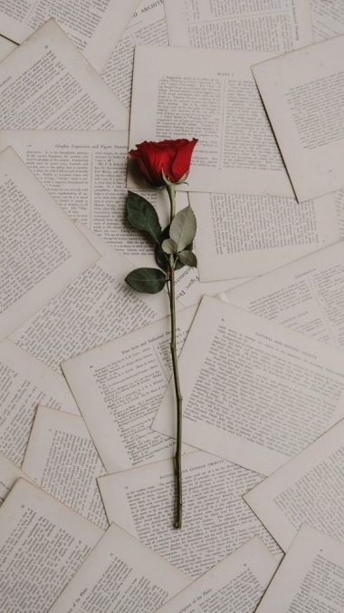 Loen teie eest raamatuid ning teen selle põhjal esse või vastan küsimustele
