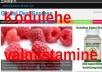 teen Sulle Wordpressi põhjal kodulehe koos sisuga, .com domeeniga ning 1 aastase majutusega
